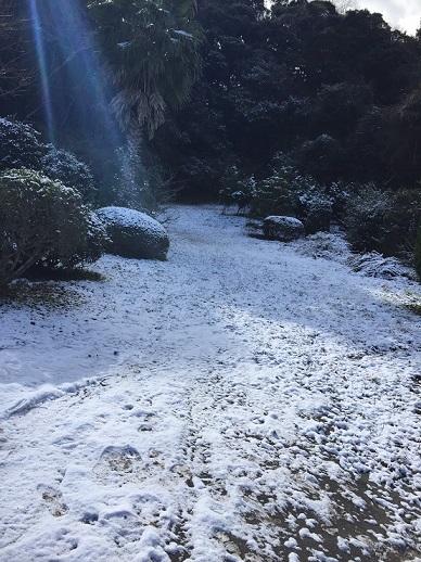 雪サイズ変更